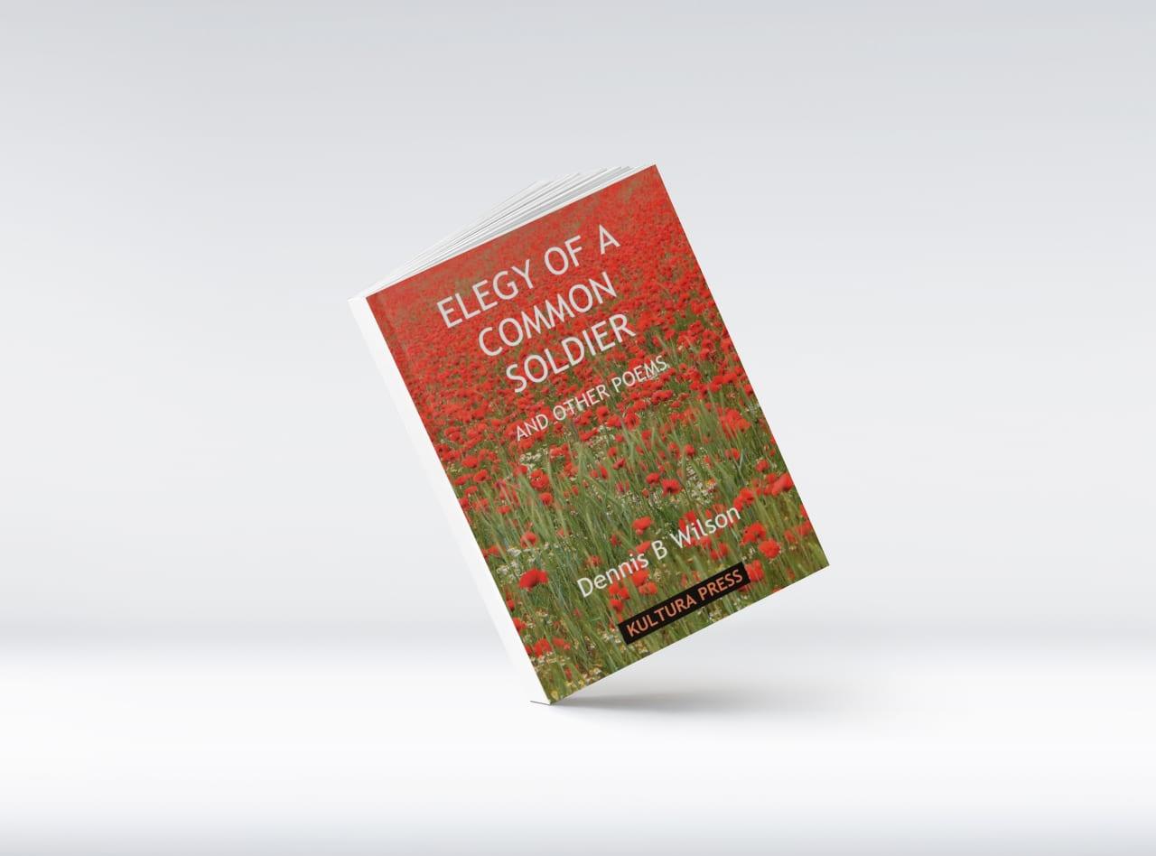 Elegy of a Common Soldier and Other Poems by Dennis B. Wilson (Poem about fighting in World War II & the futility of war)